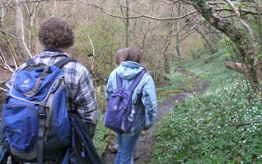 walking in conwy valley. llanrwst